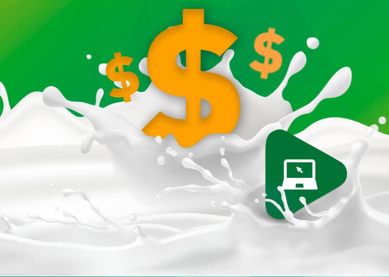 Como a nutrição influencia na qualidade do leite e no bolso do produtor