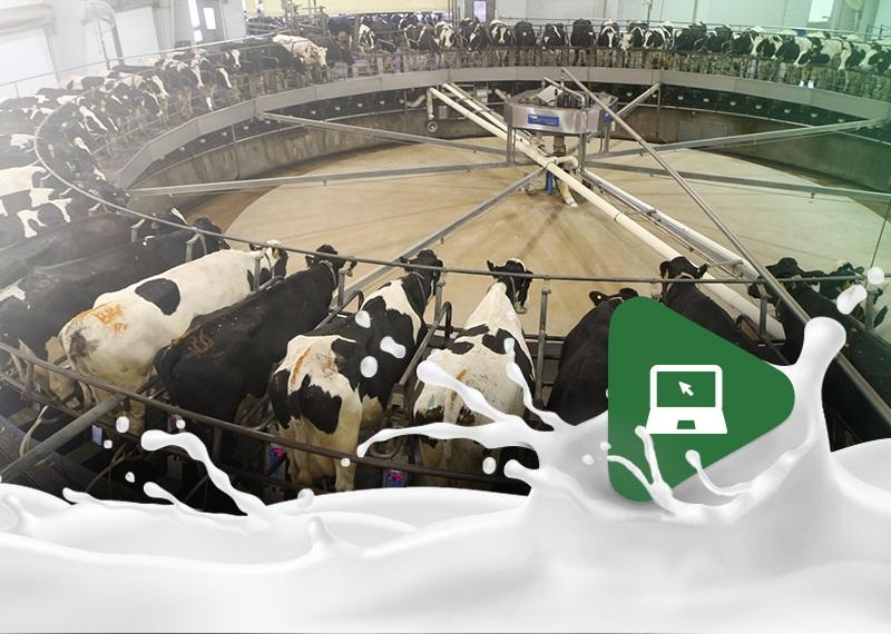 A Tecnologia a favor da Pecuária de Leite